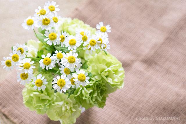 花がいいかんじ2.jpg