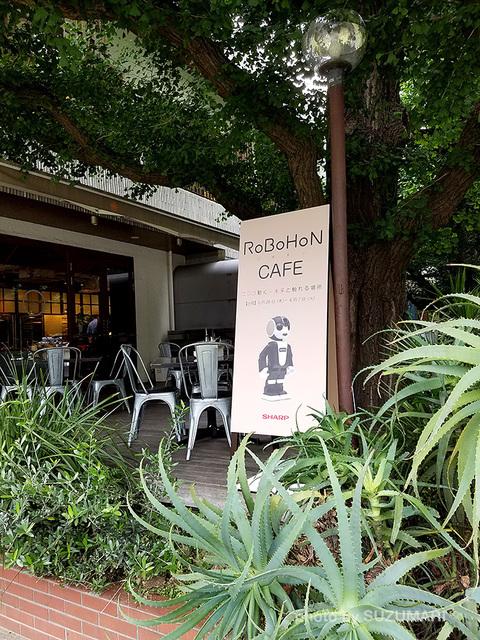 RoBoHoN_Cafe_04.jpg